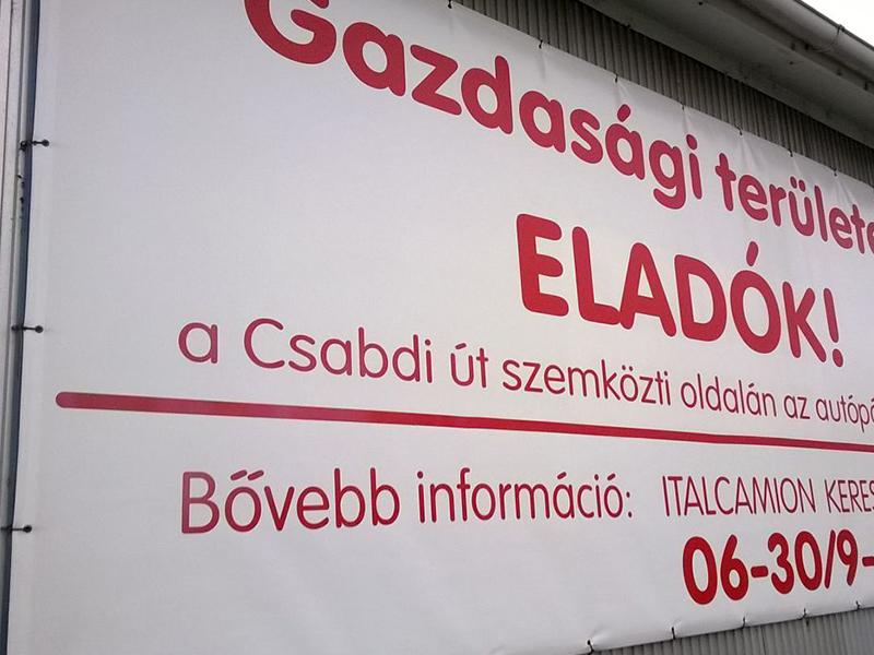eladomolino_galeria_6.jpg